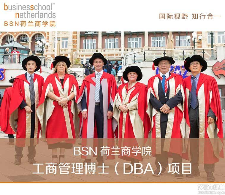 BSN荷兰商学院工商管理博士(DBA)项目