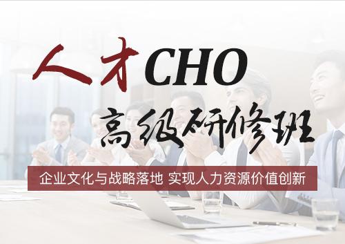 清友会人力资源总监(CHO)实战班