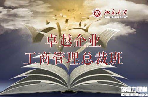 北京大学卓越企业工商管理总裁班